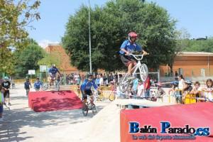 Fiesta Bicicleta 2013-1983