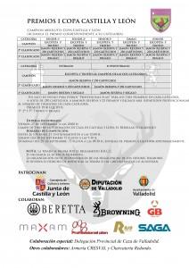 premios copa cyl 20132