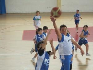 Baloncesto benjamin Tobarra-4203
