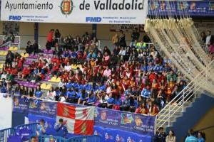 Campeonato de España Voleibol 1-