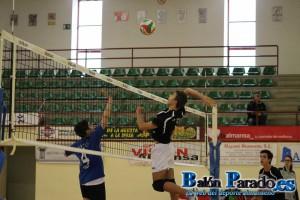 Gran voleibol desplegado por el Cadete del C.V.Almansa. No os perdáis la galería de imágenes