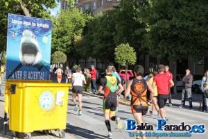Medio Maratón 2013-3431