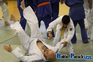 Judo 2014-5390