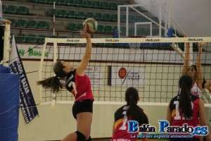 Voleibol Juvenil (CVAlmansa-Tomelloso)-3503