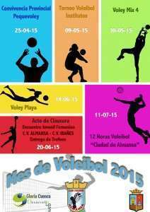 Cartel Mes Voleibol 2015