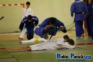 Judo 2014-5040